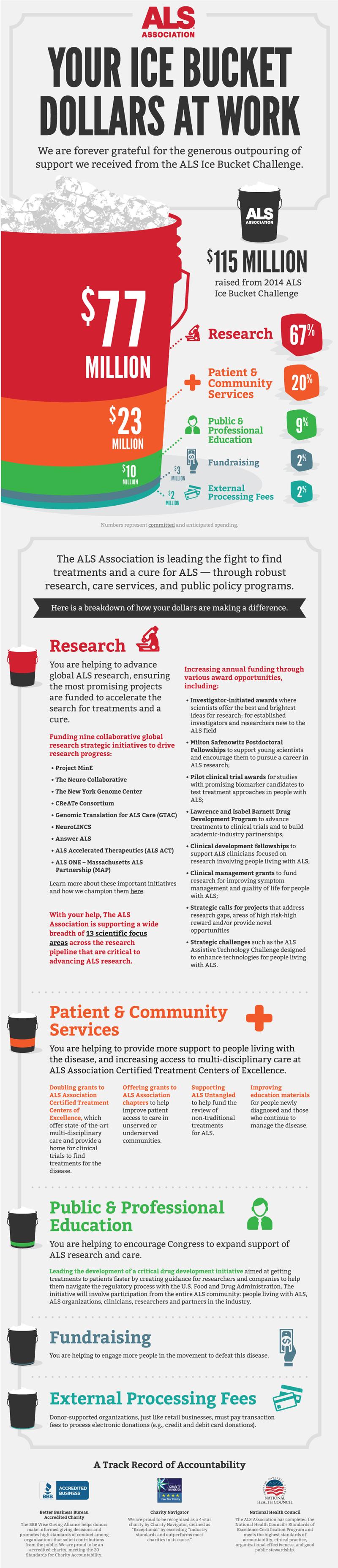 IBC Full infographic