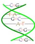 genes1