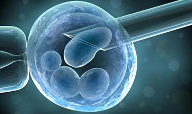 impact-stem-cells