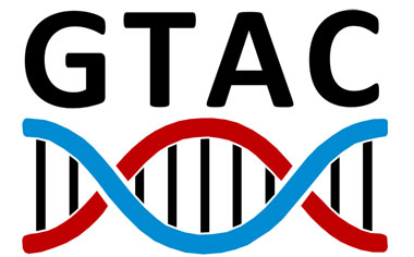 strategic-gtac-logo